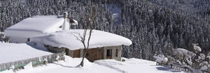 Pertouli Trikala - The best winter destination
